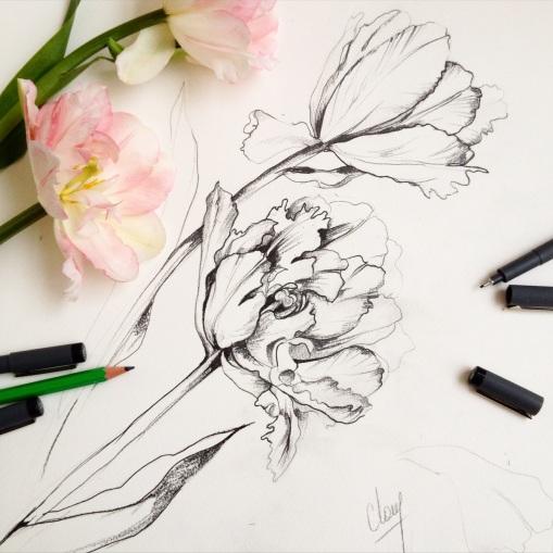 Les tulipes